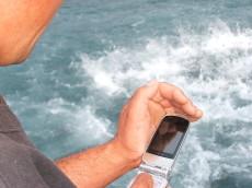 国産水産物新需要創出ビジネスモデル化実証事業